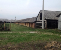 Цегельний завод Лубни